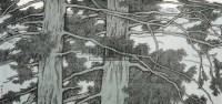 松树 镜心 纸本设色 - 145215 - 中国当代书画 - 2010秋季艺术品拍卖会 -收藏网