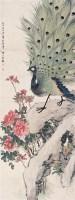 孔雀 立轴 设色纸本 - 汪琨 - 名家书画·油画专场 - 2006夏季书画艺术品拍卖会 -收藏网