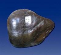 和田乌雅皮青玉石 -  - 和田玉巨石专场 - 2011秋季和田玉巨石专场拍卖会 -收藏网