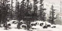 玉龙梦牧 设色纸本 - 4486 - 中国书画(一) - 2011春季书画拍卖会 -收藏网