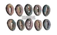 银贝一组十枚 -  - 历代古钱专场 - 2011春季拍卖会 -收藏网