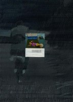 《回家》之二 布面油画 - 王光乐 - 中国现当代艺术 - 2011秋季艺术品拍卖会 -收藏网