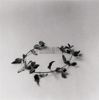 洪磊 2001年作 黄金条枝子 - 洪磊 - 中国油画雕塑 - 2006秋季拍卖会 -收藏网