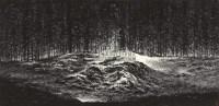 希望之光 镜心 水墨纸本 - 117416 - 中国当代水墨 - 2011年春季拍卖会 -收藏网