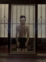 透明的尘埃 -  - 中国油画 - 2008春季中国油画拍卖会 -中国收藏网