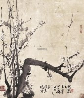 白梅 镜心 设色纸本 - 128053 - 中国书画一 - 2011首届大型书画精品拍卖会 -收藏网