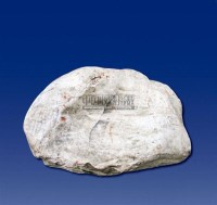 世界罕见的和田巨大一级白玉石 -  - 和田玉巨石专场 - 2011秋季和田玉巨石专场拍卖会 -收藏网
