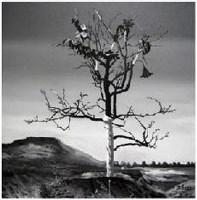 赵光臣 未来之树之二 - 赵光臣 - 中国外来艺术 - 2007年秋季大型艺术品拍卖会 -收藏网