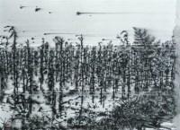 风景 纸本 水彩 - 140775 - 名家西画 当代艺术专场 - 2008年春季拍卖会 -中国收藏网