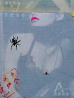黑蜘蛛 综合材料 -  - 名家西画 当代艺术专场 - 2008年春季拍卖会 -收藏网