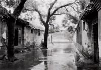 雨中胡同(柳巷胡同) 无酸纸  收藏级艺术微喷 - 徐勇 - 影像艺术 - 2006年秋季拍卖会 -收藏网