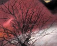 幻象之二 布本 - 139925 - 绍晋斋暨立派艺术中心藏中国油画、雕塑、水彩 - 2006冬季艺术品拍卖会 -收藏网