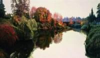 金色池塘 布面油画 - 王路 - 中国油画 雕塑专场 - 2008年迎春艺术品拍卖会 -收藏网