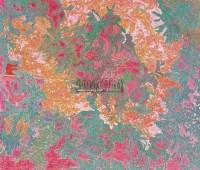 探头笑 布面 油画 - 何绮兰 - 中国油画 雕塑影像 - 2006广州冬季拍卖会 -收藏网