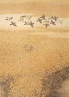 车来通 秋撒一片金 镜心 设色纸本 -  - 当代中国书画(一) - 2006畅月(55期)拍卖会 -收藏网