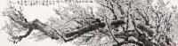 梅开皆五福先到吉人家 镜心 - 王立人 - 当代书画保真返收购专场 - 2012年秋季当代书画保真返收购专场拍卖会 -收藏网