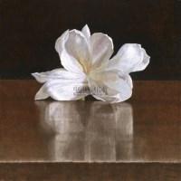 五月茉莉 卵彩 油画 亚麻布 - 叶子奇 - 亚洲现代与当代艺术 - 台北2012秋季拍卖会 -收藏网