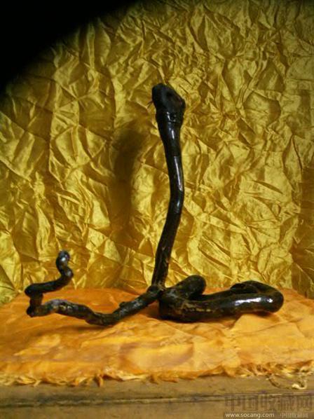 眼镜蛇-古玩行-中国收藏网