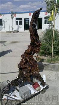 胡杨根雕,绝对少有-收藏网