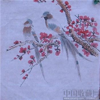 花鸟小品-中国收藏网