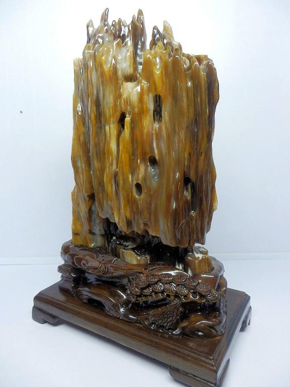 树化玉老坑种水料天然缅甸木化玉收藏树木化石舍利