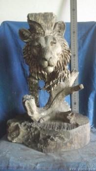 木雕是狮子头部一个,很大,香樟木很香,驱霉避害-中国收藏网