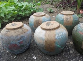 普洱-中国收藏网