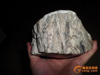 树化石摆件-收藏网