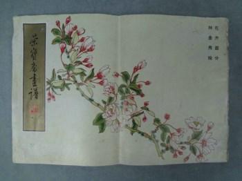 FWPSY-名家精粹《荣宝斋画谱》(一百)花卉部分,作者;林金秀-收藏网