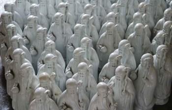 白胎寿星 -收藏网