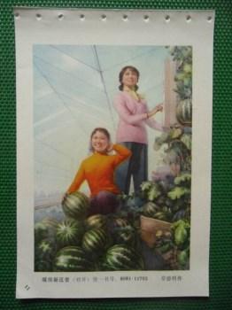 暖房新瓜香 -收藏网