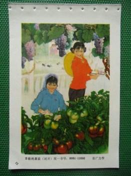 丰收的果实 -收藏网