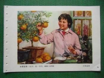 女园艺师 -收藏网