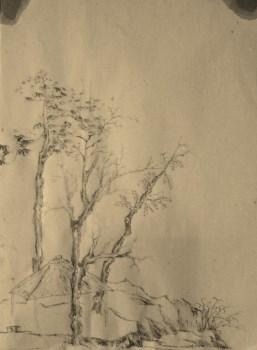 山水-中国收藏网