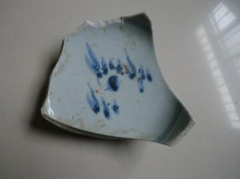 瓷片标本(1)-收藏网