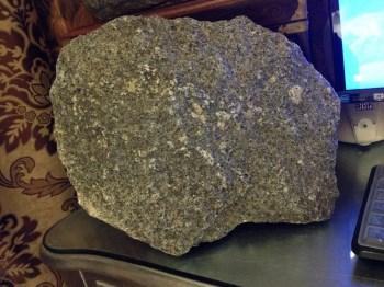 灵芝化石化晶-收藏网