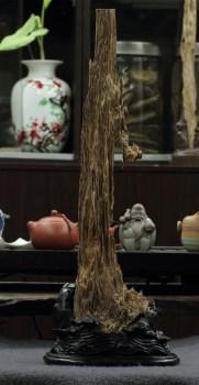 【香缘木艺】国香巅峰 海南沉香木耳朵摆件 收藏级-收藏网